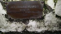 Plaque - Molossian Hounds